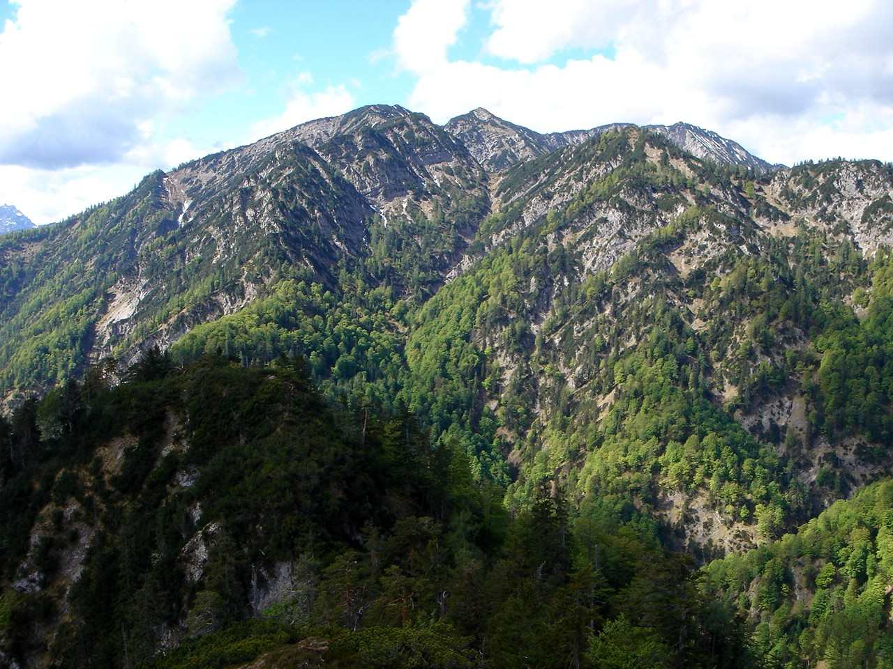 Foto: Manfred Karl / Mountainbiketour / Saurüsselkopf (1270m) / Blick gegen Kreuzschneid, Wildalphorn, Dürrnbachhorn / 16.06.2007 09:49:51