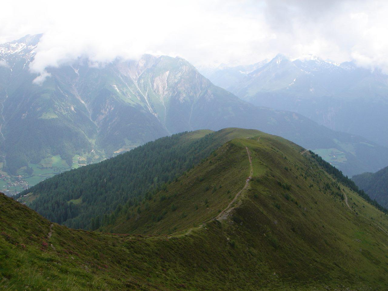 Foto: Manfred Karl / Wandertour / Auf den Griften / Blick vom Legerle auf den schönen Wiesenrücken, den man von der Wetterkreuzhütte her übersteigt. / 16.06.2007 10:28:10