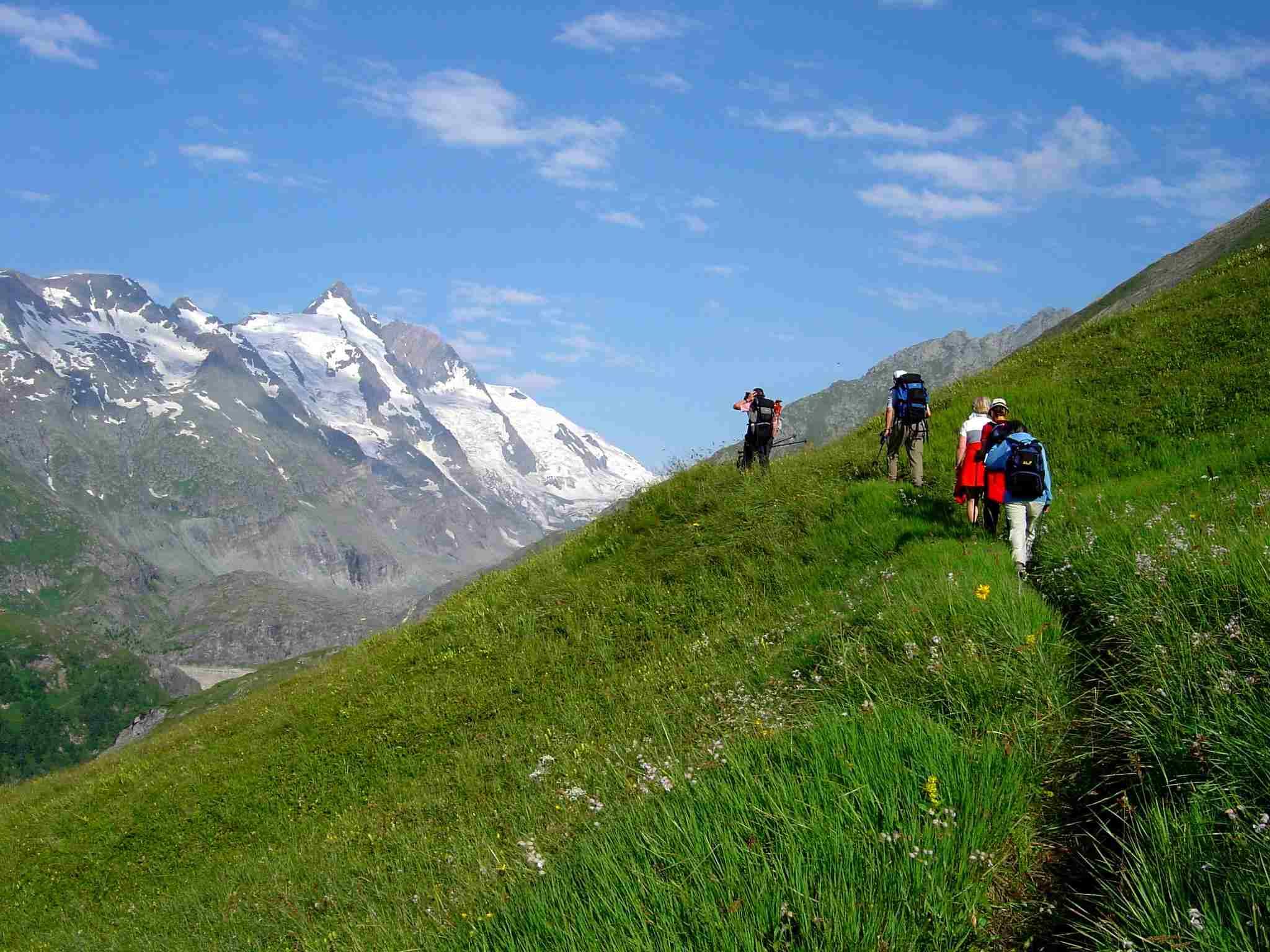 Foto: Manfred Karl / Wander Tour / Über Blumenwiesen auf die Racherin / Die herrlichen Blumenwiesen / 17.06.2007 06:42:20
