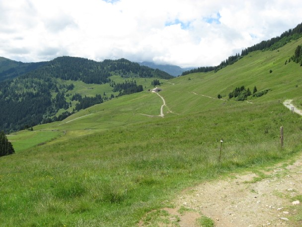 Foto: mucho / Mountainbike Tour / Feldalphorn / Am Weg zur Kasalm / 18.06.2007 18:13:30