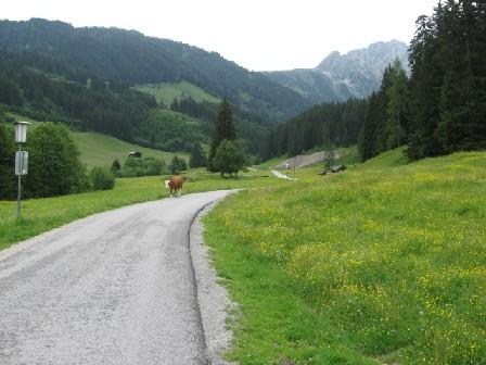 Foto: mucho / Mountainbiketour / Schönachtal / Eingang in Schönachtal / 18.06.2007 18:55:11