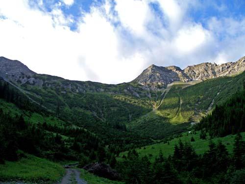 Foto: vince 51 / Wander Tour / Von Bichelbächle auf den Roten Stein / 18.06.2007 22:09:58