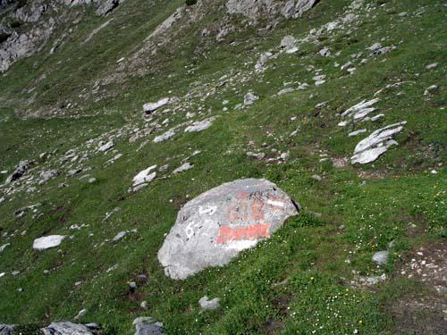 Foto: vince 51 / Wander Tour / Von Bichelbächle auf den Roten Stein / 18.06.2007 22:05:51