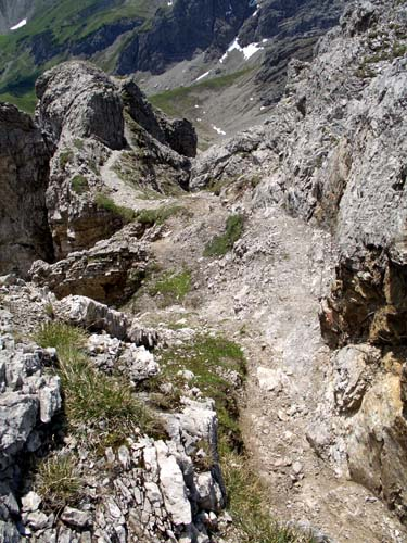 Foto: vince 51 / Wander Tour / Von Bichelbächle auf den Roten Stein / 18.06.2007 22:04:27