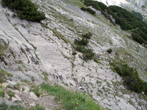 Foto: vince 51 / Wander Tour / Von Bichelbächle auf den Roten Stein / 18.06.2007 22:06:04