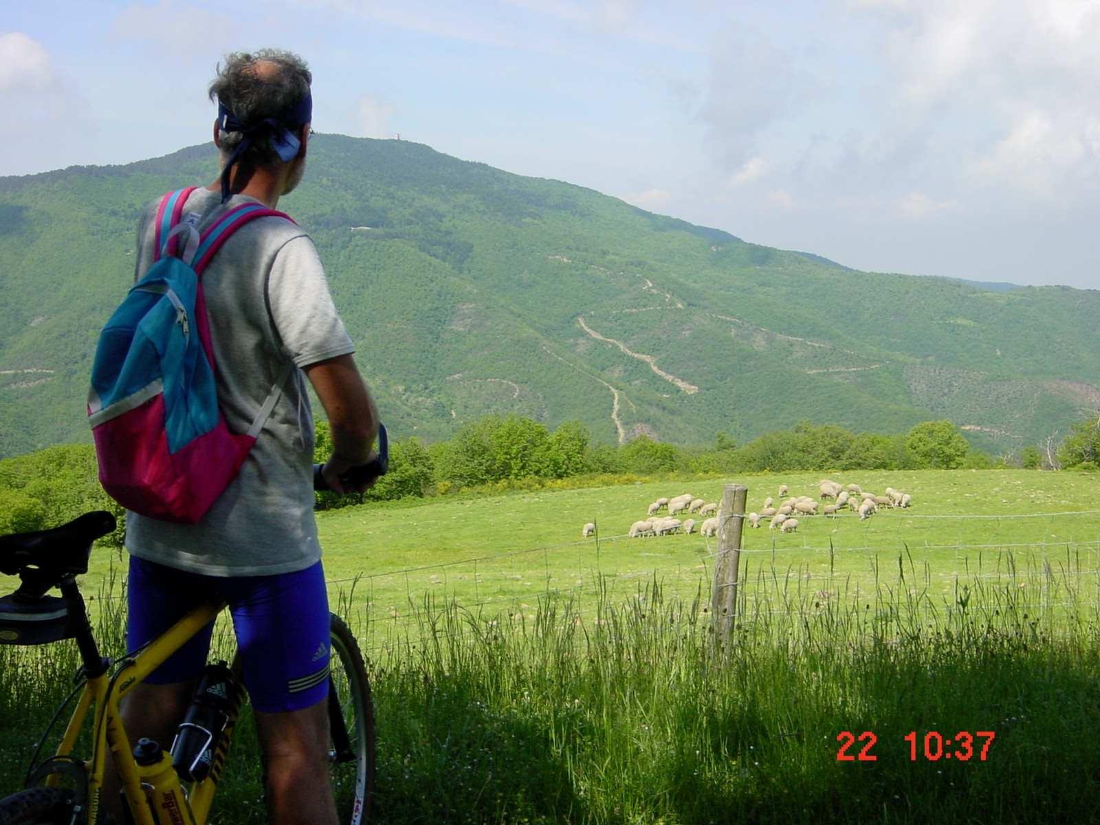 Foto: Manfred Karl / Mountainbike Tour / Monte Castel Giudeo, 1037 m / Alta San Egidio / 20.06.2007 06:27:59
