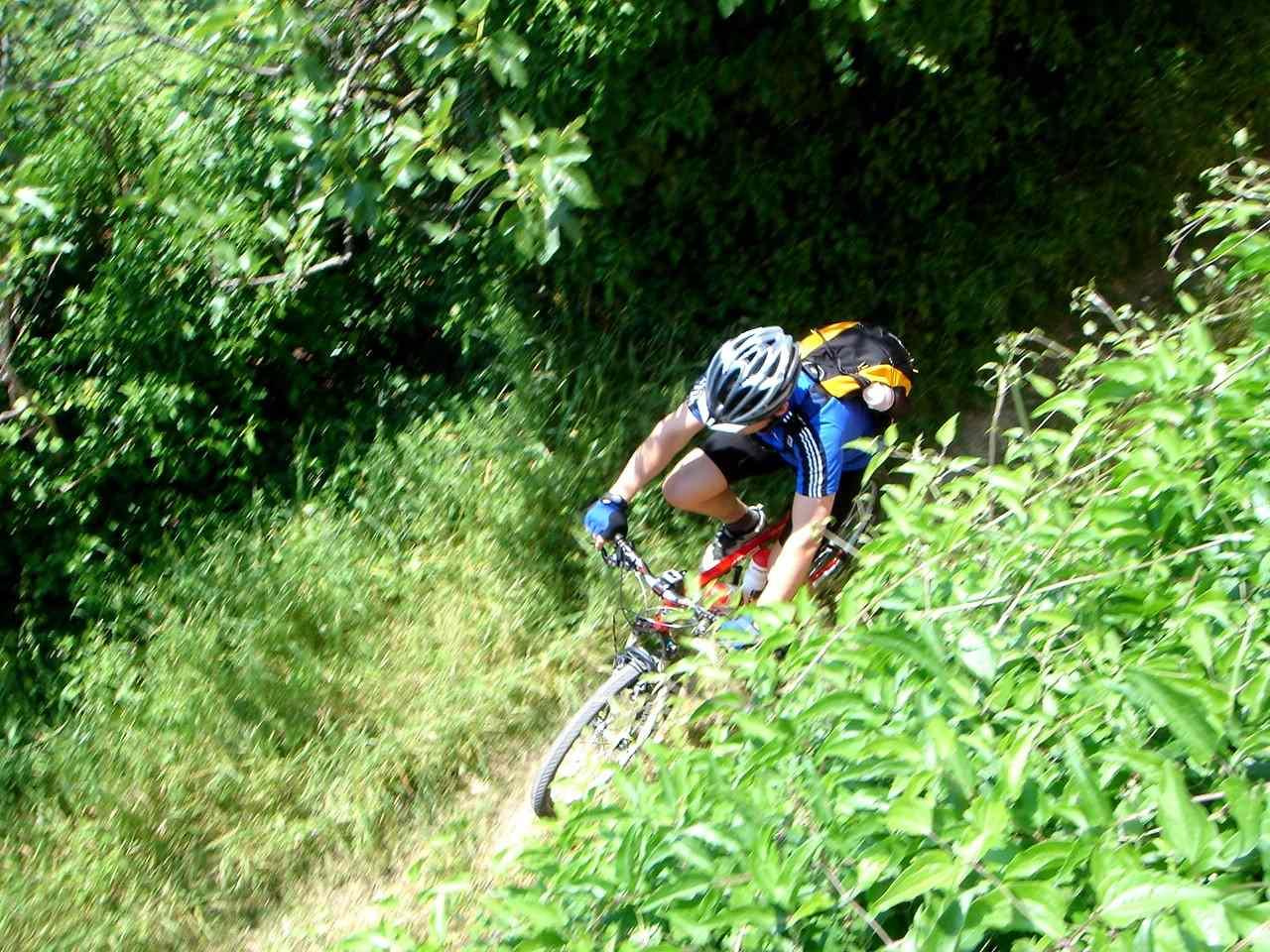 Foto: Manfred Karl / Mountainbike Tour / Von Bagno Vignoni nach Pienza / Vor Vignoni / 20.06.2007 17:48:48
