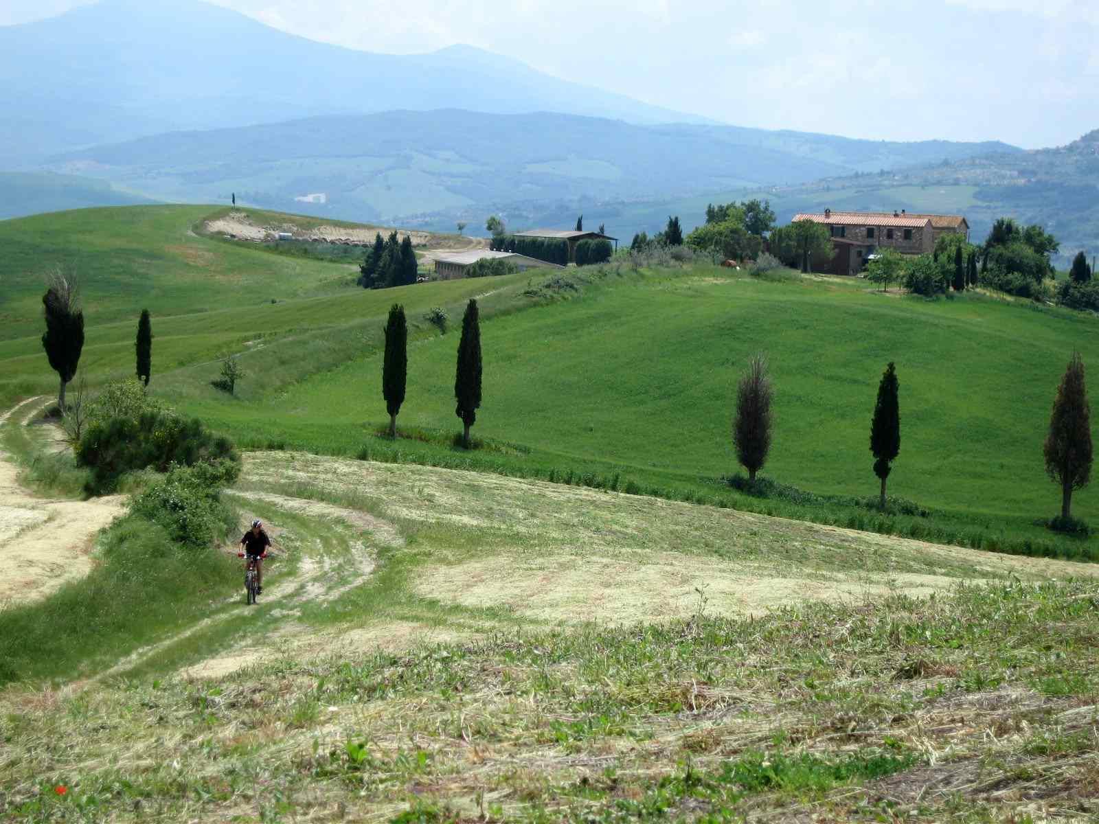 Foto: Manfred Karl / Mountainbike Tour / Von Bagno Vignoni nach Pienza / Im Hintergrund links der Monte Amiata. / 20.06.2007 17:47:25