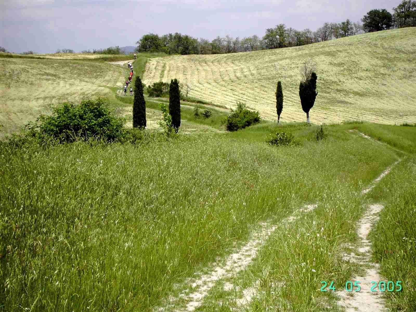 Foto: Manfred Karl / Mountainbike Tour / Von Bagno Vignoni nach Pienza / 20.06.2007 17:46:28