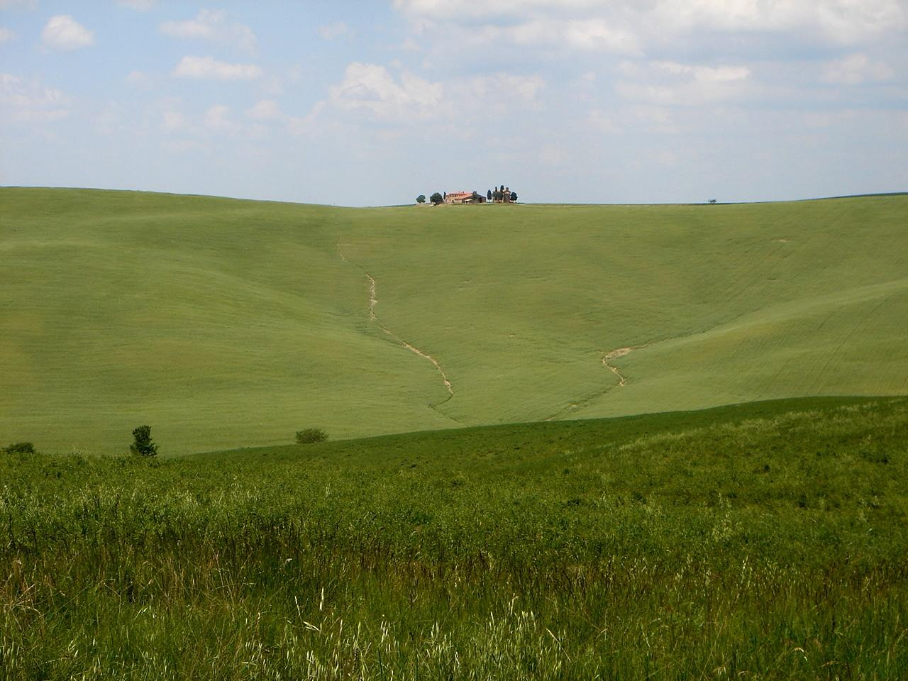 Foto: Manfred Karl / Mountainbike Tour / Von Bagno Vignoni nach Pienza / Toskana! / 20.06.2007 17:44:50