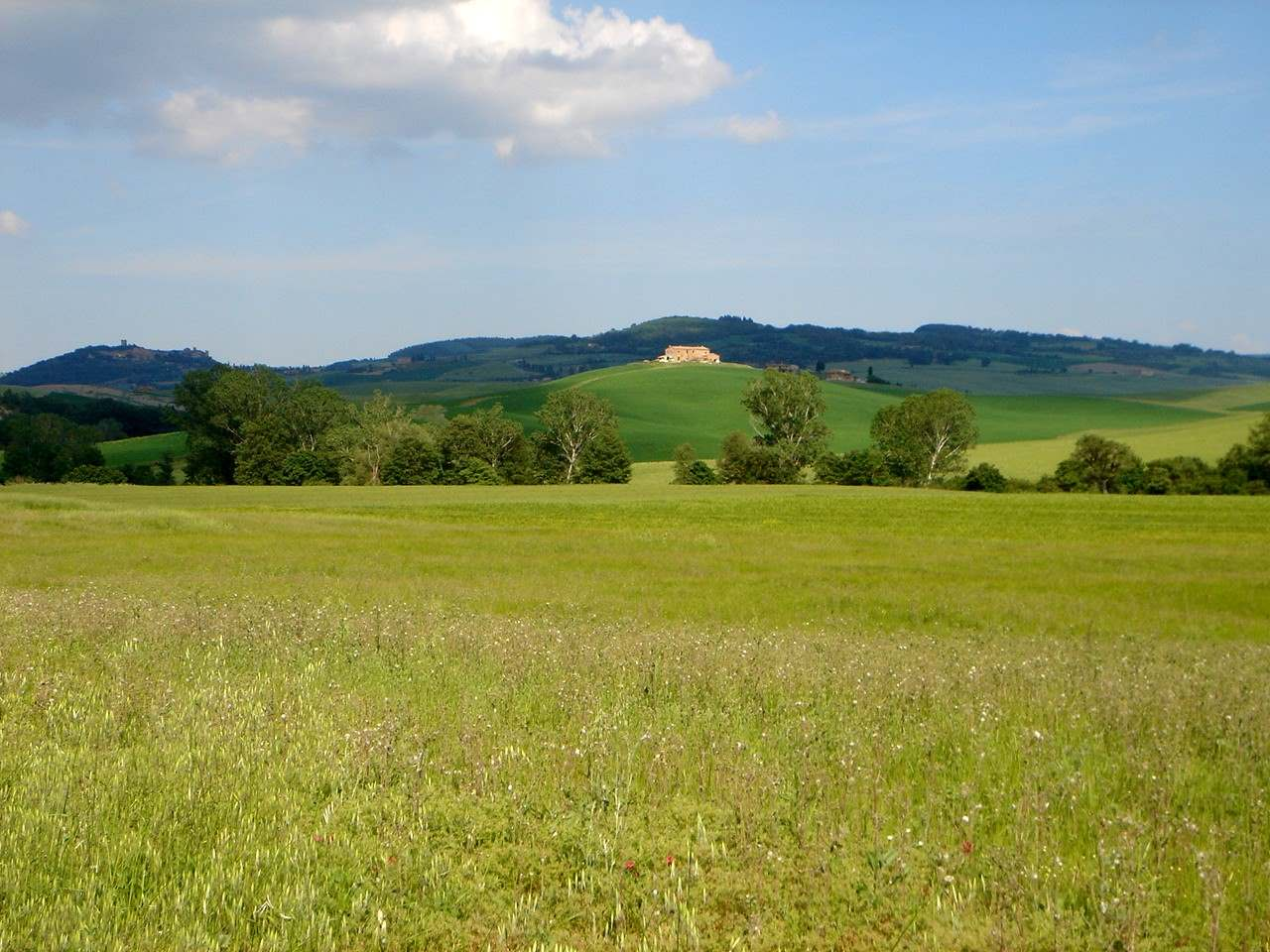 Foto: Manfred Karl / Mountainbike Tour / Von Bagno Vignoni nach Pienza / Rückweg nach Bagno / 20.06.2007 17:44:15