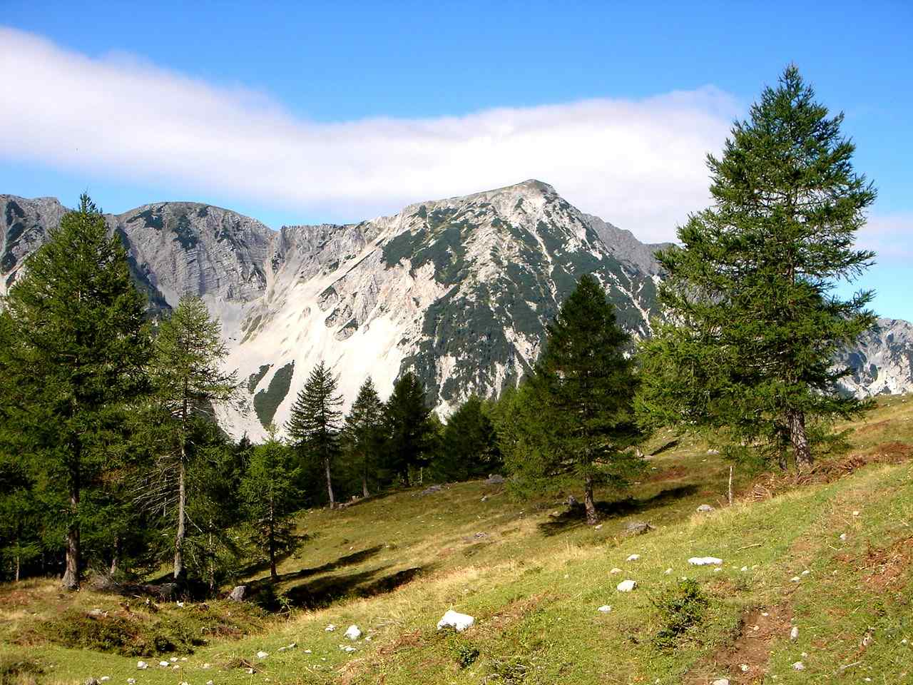 Foto: Manfred Karl / Wander Tour / Über die Klagenfurter Hütte auf den Geißberg / Aufstieg zum Kosiak / 20.06.2007 18:10:59