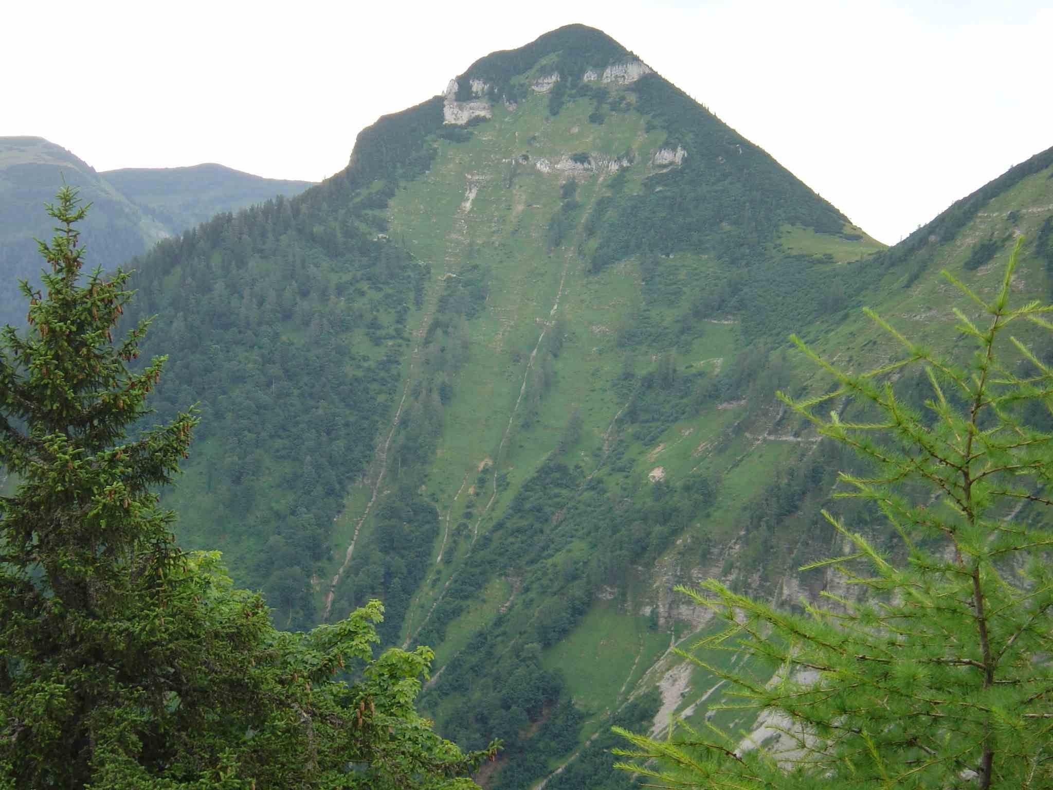 Foto: Manfred Karl / Wander Tour / Über den Nordostgrat auf den Regenspitz / Gennerhorn / 20.06.2007 18:23:36