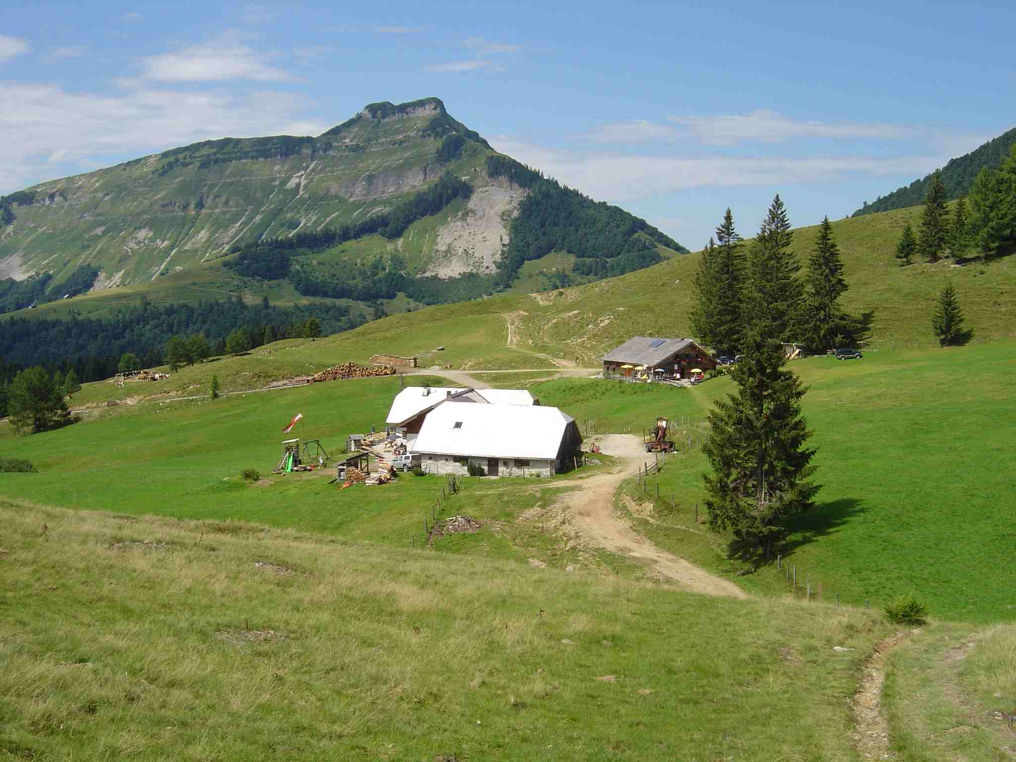 Foto: Manfred Karl / Wander Tour / Über den Nordostgrat auf den Regenspitz / Bergalm - Schmittenstein / 20.06.2007 18:23:21