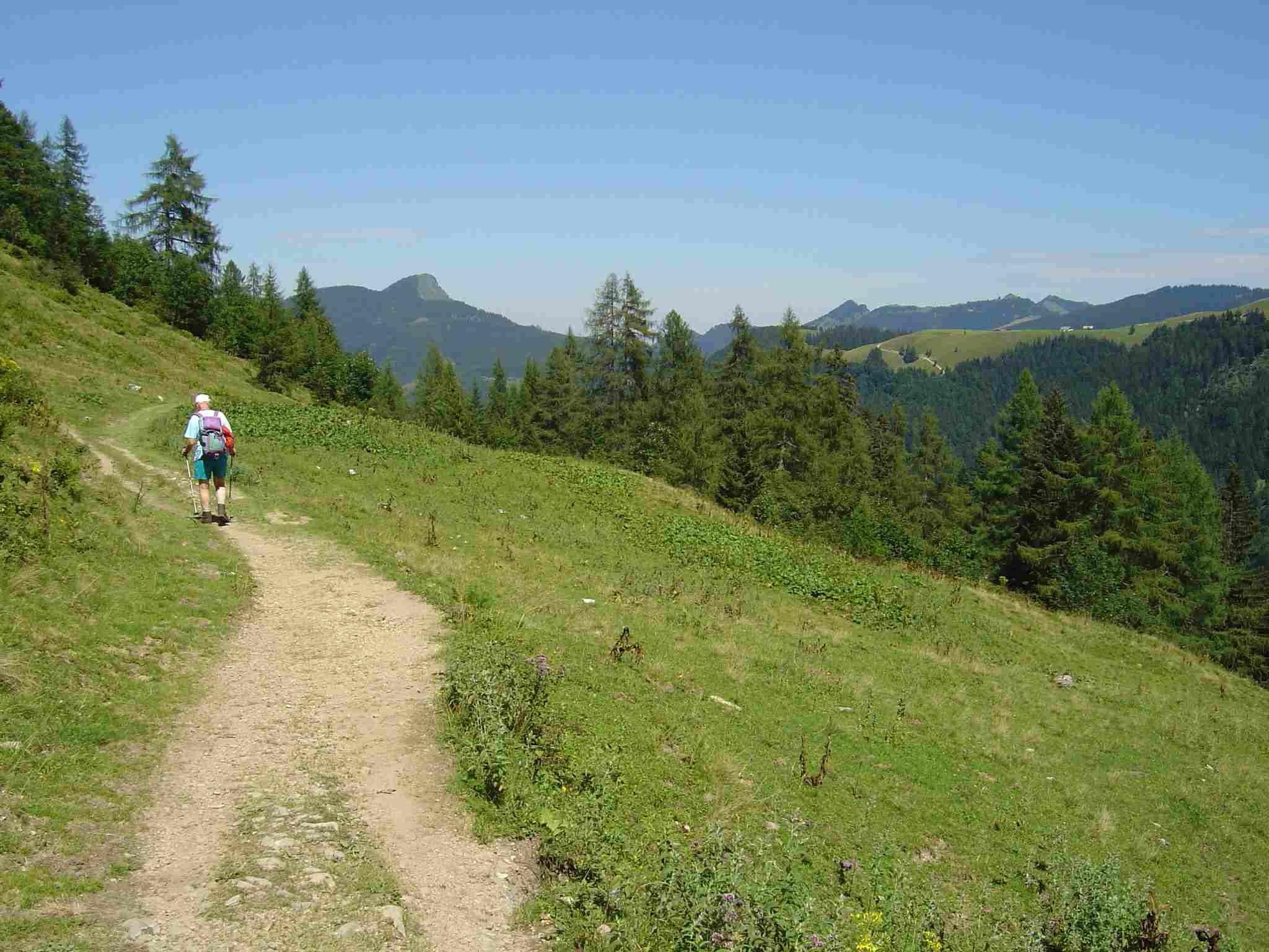 Foto: Manfred Karl / Wander Tour / Über den Nordostgrat auf den Regenspitz / Unterhalb der Bergalm / 20.06.2007 18:22:20