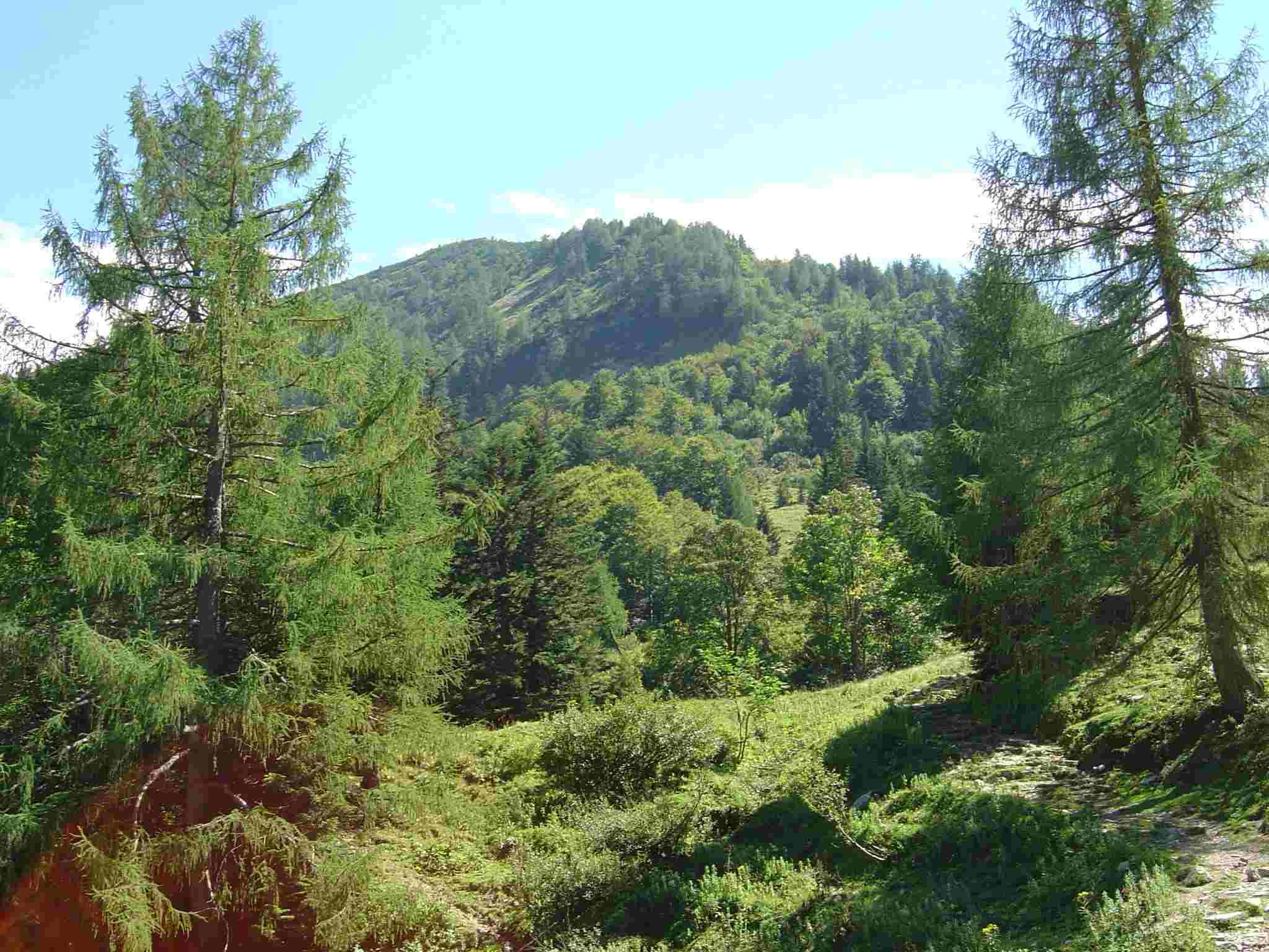 Foto: Manfred Karl / Wander Tour / Über den Nordostgrat auf den Regenspitz / Regenspitz, rechts der Abstiegsweg / 20.06.2007 18:21:50