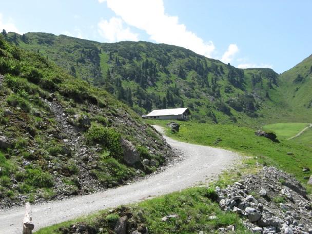 Foto: mucho / Mountainbiketour / Stumm Kothüttenalm Otto Leixl Hütte Alpbach / Steinbergalm / 20.06.2007 20:24:18