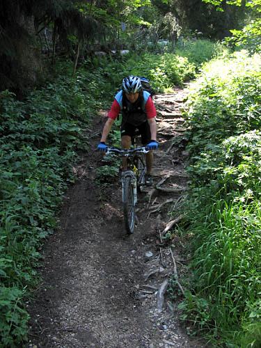Foto: Lenswork.at / Ch. Streili / Mountainbike Tour / Von Markt Schellenberg zur Kührointhütte (1.420 m) und Archenkanzl (1.346m) / Abfahrt von der Kührointhütte nach Königsee  / 25.06.2007 10:31:00