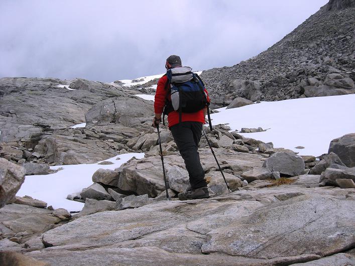 Foto: Andreas Koller / Wander Tour / Vom Maltatal ins Gasteinertal (2886 m) / Im Anstieg zur Kleinelendscharte / 27.06.2007 17:13:23