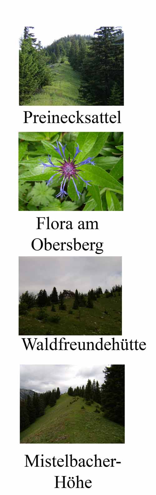 Foto: pipe / Wander Tour / Obersbergrunde / 01.07.2007 15:09:19