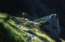 Foto: Tirol Werbung / Wander Tour / Adlerweg Etappe A17 - Vorbei an smaragdgrünen Seen / 26.07.2007 10:05:50