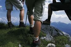 Foto: Tirol Werbung / Wander Tour / Adlerweg Etappe A22 - Über steile Wiesenflanken und Schuttreisen / 26.07.2007 10:12:13