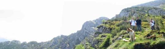Foto: Ötschertrekker / Wander Tour / Zum Ötschergipfel über die Himmelsleiter / Himmelsleiter mit Blick zum Rauhen Kamm / 10.07.2007 12:11:14