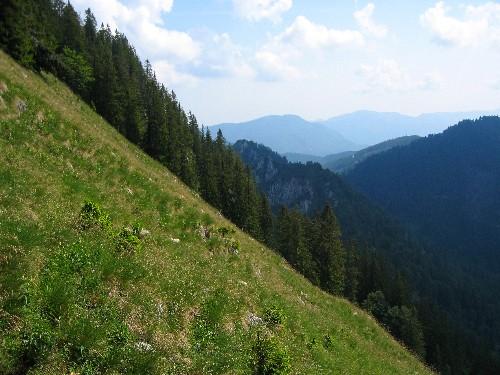 Foto: Johannes Mattes / Wandertour / Panorama-Rundweg: Rindbach - Erlakogel - Hochachsel - Gasselhütte - Karbertal - Rindbach / Blick vom Erla- auf den Gasselkogel / 07.07.2007 01:07:06