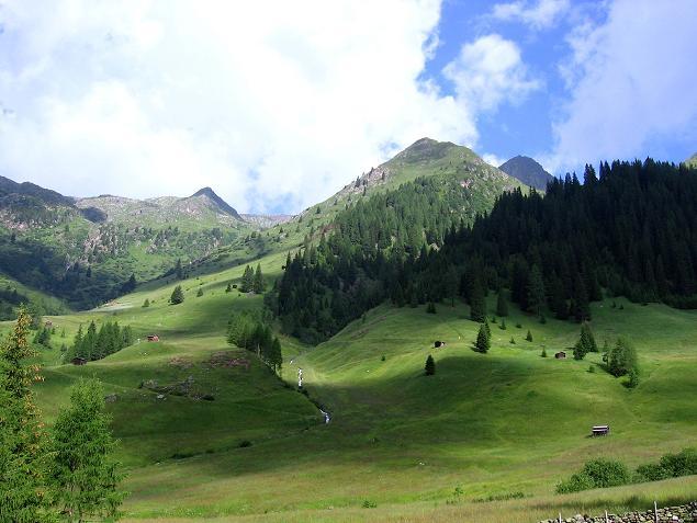 Foto: Andreas Koller / Wander Tour / Durch das Arntal auf die Weiße Spitze (2963 m) / Ausgangspunkt Unterstalleralm / 10.07.2007 17:55:48