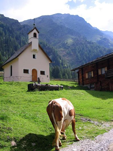 Foto: Andreas Koller / Wander Tour / Durch das Arntal auf die Weiße Spitze (2963 m) / Oberstalleralm mit Weißer Spitze  / 10.07.2007 17:54:58