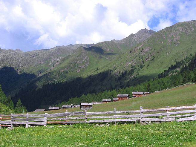Foto: Andreas Koller / Wander Tour / Durch das Arntal auf die Weiße Spitze (2963 m) / Die Oberstalleralm / 10.07.2007 17:54:41