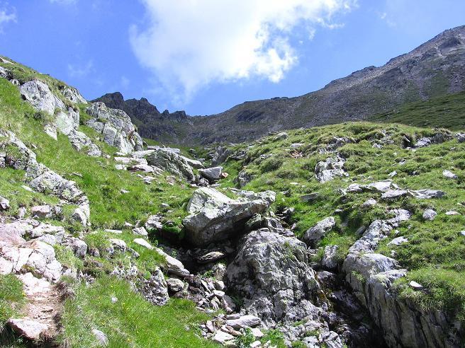 Foto: Andreas Koller / Wander Tour / Durch das Arntal auf die Weiße Spitze (2963 m) / Der steile Anstieg zur Schötter Lenke / 10.07.2007 17:53:43