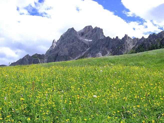Foto: Andreas Koller / Klettersteig Tour / Rotwand-Klettersteig - Via ferrata Croda Rossa (2939 m) / Die Sextener Rotwand über der Rotwandwiesen / 10.07.2007 18:38:09