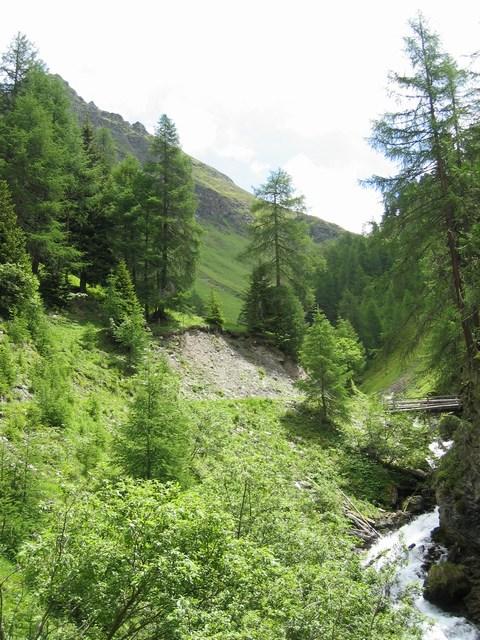 Foto: Jürgen Lindlbauer / Mountainbike Tour / Von Ried auf die Platzalpe (2181m)  / Die erste Brücke über den Platzbach auf 1932m / 13.07.2007 15:52:22