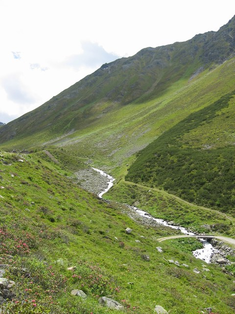 Foto: Jürgen Lindlbauer / Mountainbike Tour / Von Ried auf die Platzalpe (2181m)  / Die letzten beiden Kehren.  / 13.07.2007 15:55:11