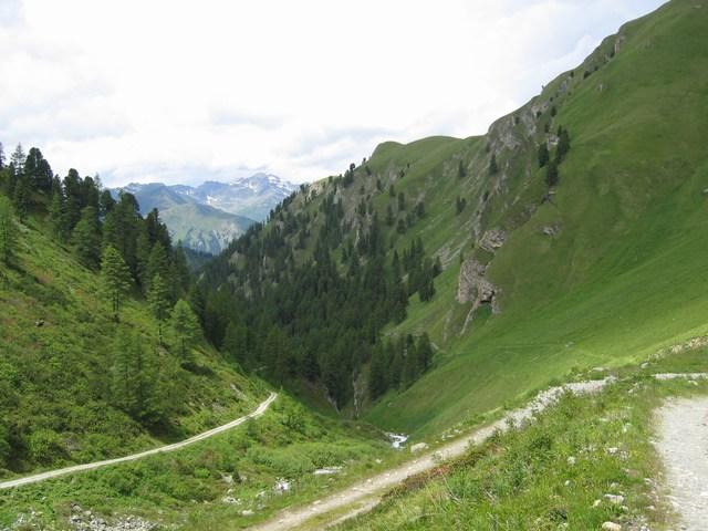 Foto: Jürgen Lindlbauer / Mountainbike Tour / Von Ried auf die Platzalpe (2181m)  / Über der Baumgrenze. / 13.07.2007 15:53:37