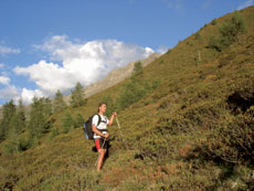 Foto: Tirol Werbung / Wander Tour / Adlerweg Etappe 36 - Zum Hexenhäuschen / 26.07.2007 12:31:09