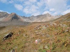 Foto: Tirol Werbung / Wander Tour / Adlerweg Etappe 38 - Ins Tal mit den zwei Gesichtern / Kaiserbergtal / 26.07.2007 12:32:56
