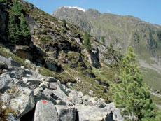 Foto: Tirol Werbung / Wandertour / Adlerweg Etappe 43 - Von Alm zu Alm am Kaunergrat / 26.07.2007 12:44:53