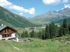 Foto: Tirol Werbung / Wander Tour / Adlerweg Etappe 46 - Auf den Spuren der Knappen / Mittergrathütte / 26.07.2007 12:48:14