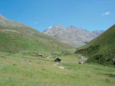 Foto: Tirol Werbung / Wander Tour / Adlerweg Etappe 48 - Zur kleinen Hütte am See / Zwieselbachtal / 26.07.2007 12:50:39