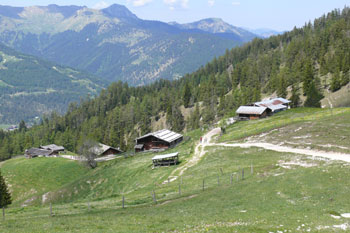 Foto: Tirol Werbung / Mountainbike Tour / Bike Trail Tirol Etappe Achensee - Kaiserhaus / Koeglalm / 20.07.2007 11:49:27