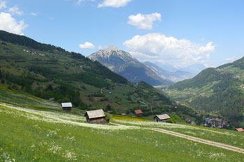 Foto: Tirol Werbung / Mountainbike Tour / Bike Trail Tirol Etappe Imst – Venetalm - Wenns / Wenns, Richtung Tschirgant / 20.07.2007 11:56:27