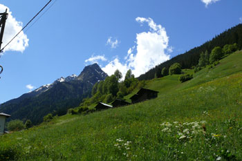 Foto: Tirol Werbung / Mountainbike Tour / Bike Trail Tirol Etappe Landeck - Ischgl / Kappler Berghänge / 23.07.2007 08:08:45