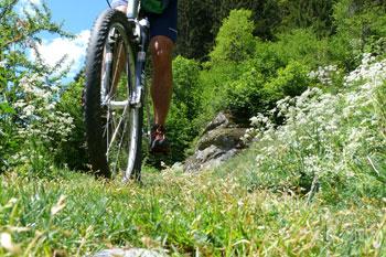 Foto: Tirol Werbung / Mountainbike Tour / Bike Trail Tirol Etappe Landeck - Ischgl / Paznauner Talweg / 23.07.2007 08:09:26