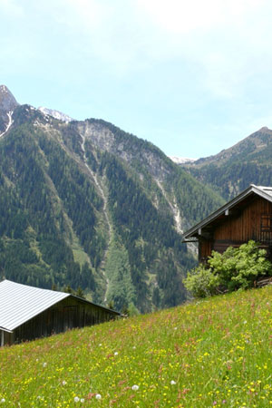 Foto: Tirol Werbung / Mountainbike Tour / Bike Trail Tirol Etappe Mayrhofen - Lanersbach / Gfahl / 23.07.2007 08:15:49