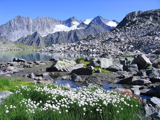 Foto: Andreas Koller / Wander Tour / Über zwei Gletscher auf den Lisenser Fernerkogel (3298 m) / Letzter Blick auf den Rinnensee und die Seespitzen (3416 m) / 08.08.2007 14:09:14