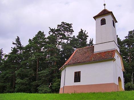 Foto: Barbara Grobbauer / Nordic Walking Tour / ApfelLand- Stubenbergsee: Garten-Eden-Tour / Ilzbergkapelle / 09.08.2007 08:51:02