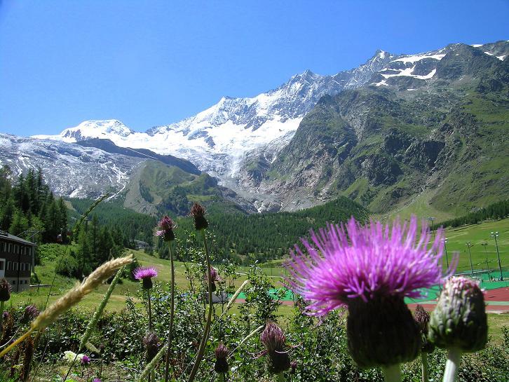 Foto: Andreas Koller / Klettersteig Tour / Klettersteig Mittaghorn (3144m) / Alphubel (4206 m), Täschhorn (4491 m), Dom (4545 m) von Saas Fee aus / 09.08.2007 10:31:58