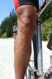Foto: Tirol Werbung / Mountainbike Tour / Bike Trail Tirol Etappe Ehrwald - Scharnitz / 14.08.2007 08:28:12